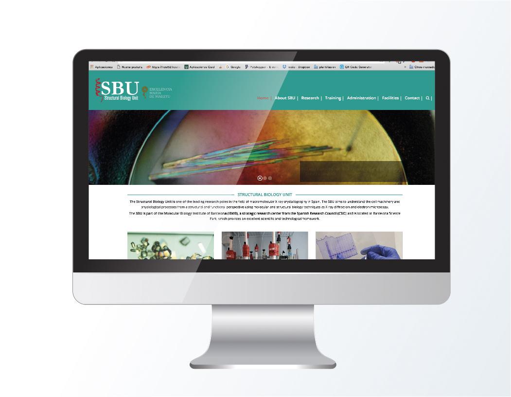 Diseño de página web corporativa para SBU