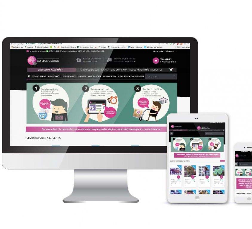 Diseño y posicionamiento en buscadores para tienda online Corales a dedo