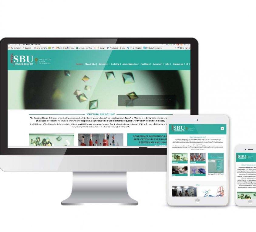Diseño, desarrollo y posicionamiento SEO web SBU